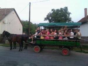 lovaskocsi
